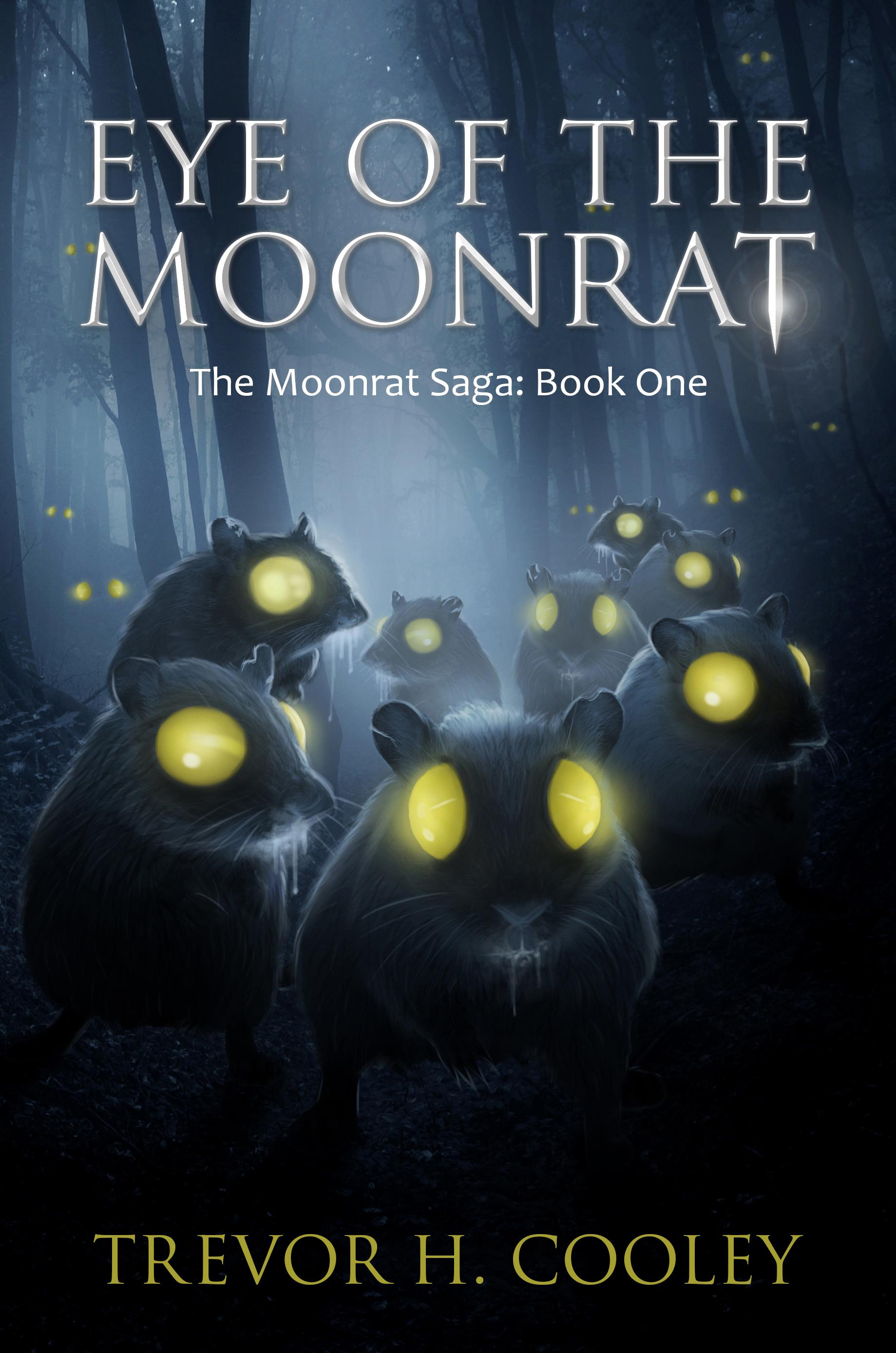 scott meyer magic 2.0 book 6 release date